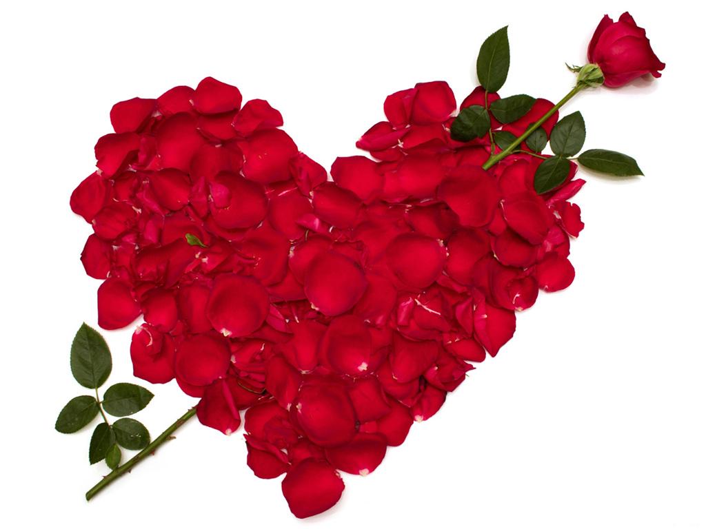 بالصور صور حب صور حب , صور رومانسيه رائعه 4239 11