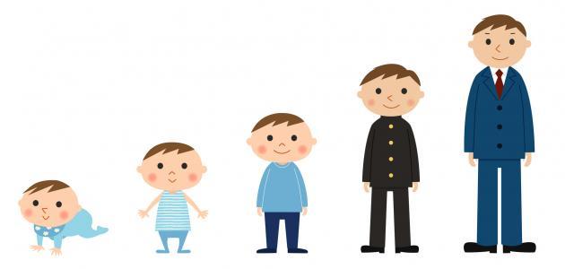 صورة تطور الطفل , مراحل نمو الطفل