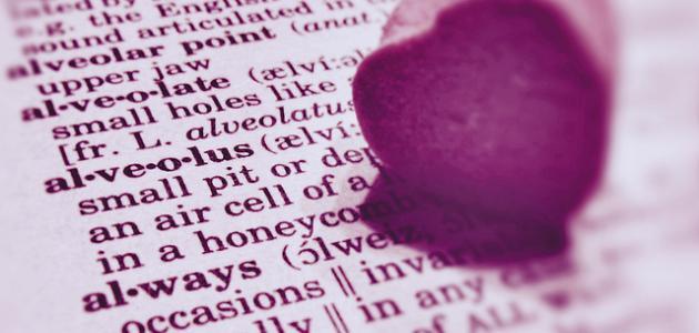 بالصور اجمل كلام يقال للحبيبة , احلى الكلمات الرومانسية للحبيبة 4446 4