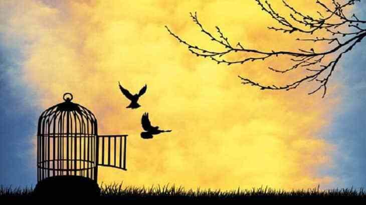 بالصور موضوع تعبير عن الحرية , كلمات عن الحرية 4515 2