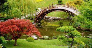 اروع الصور في العالم , اجمل صورة في العالم