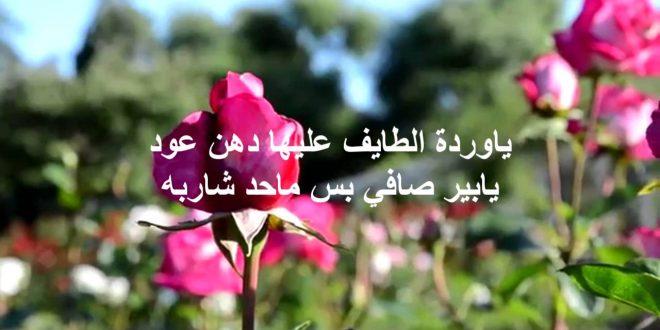 بالصور كلمات عن الورد , اجمل الكلمات عن الورد 4600 10