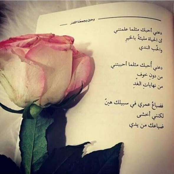 بالصور كلمات عن الورد , اجمل الكلمات عن الورد 4600 8