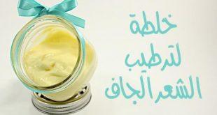 بالصور خلطات للشعر الجاف , وصفات للتخلص من الشعر الجاف 4646 3 310x165