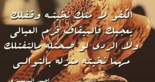 صورة قصائد مدح الرجال الكفو , اجمل القصائد لمدح الكفو