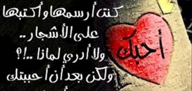 صور كلمات في الحب والغرام والعشق احلى كلام في الحب , احلى الكلمات فى الحب والعشق الغرامى