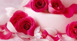صوره اجمل ورود الحب , صور لاجمل والطف ورود الحب