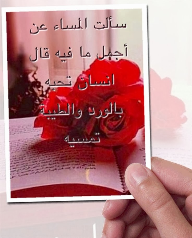 بالصور اجمل عبارات الحب والرومانسية , صور لعبارات جميلة جدا ورائعة عن الحب والرومانسية 6206 6