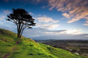بالصور صور عن البيئة , صور تحفة جدا عن البيئة 6306 11 310x205