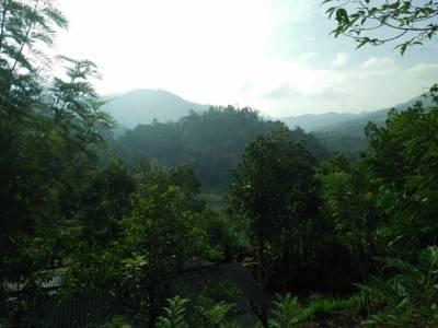 بالصور صور عن البيئة , صور تحفة جدا عن البيئة 6306 8