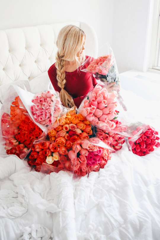صوره اجمل الورود في العالم , اروع انواع اشكال الازهار غايه فى الجمال