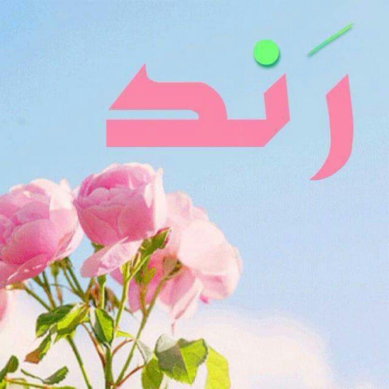 صوره معنى اسم رند , اسم عربي مؤنث جديد
