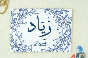 صوره معنى اسم زياد , صفات مميزة لحامل اسم زياد