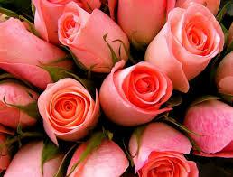 بالصور رسائل رومانسية , انواع الرسائل المميزة 3144 14