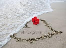 بالصور اجمل حب رومانسي , الحب والرومانسيه طرف واحد 3277 4