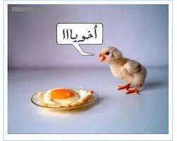 صورة اجمل الصور المضحكة على الفيس بوك , الضحك اصبح بفلوس