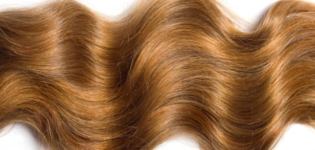 صور تطويل الشعر في يوم , طريقة لتطويل الشعر بسرعة