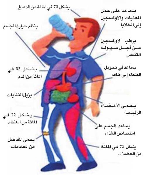 صور فوائد شرب الماء , فوائد عديدة لصحه الانسان بشرب الماء