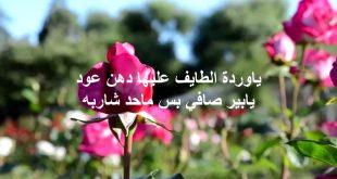 بالصور عبارات عن الورد , خواطر رقيقه فى حب الورد 713 11 310x165