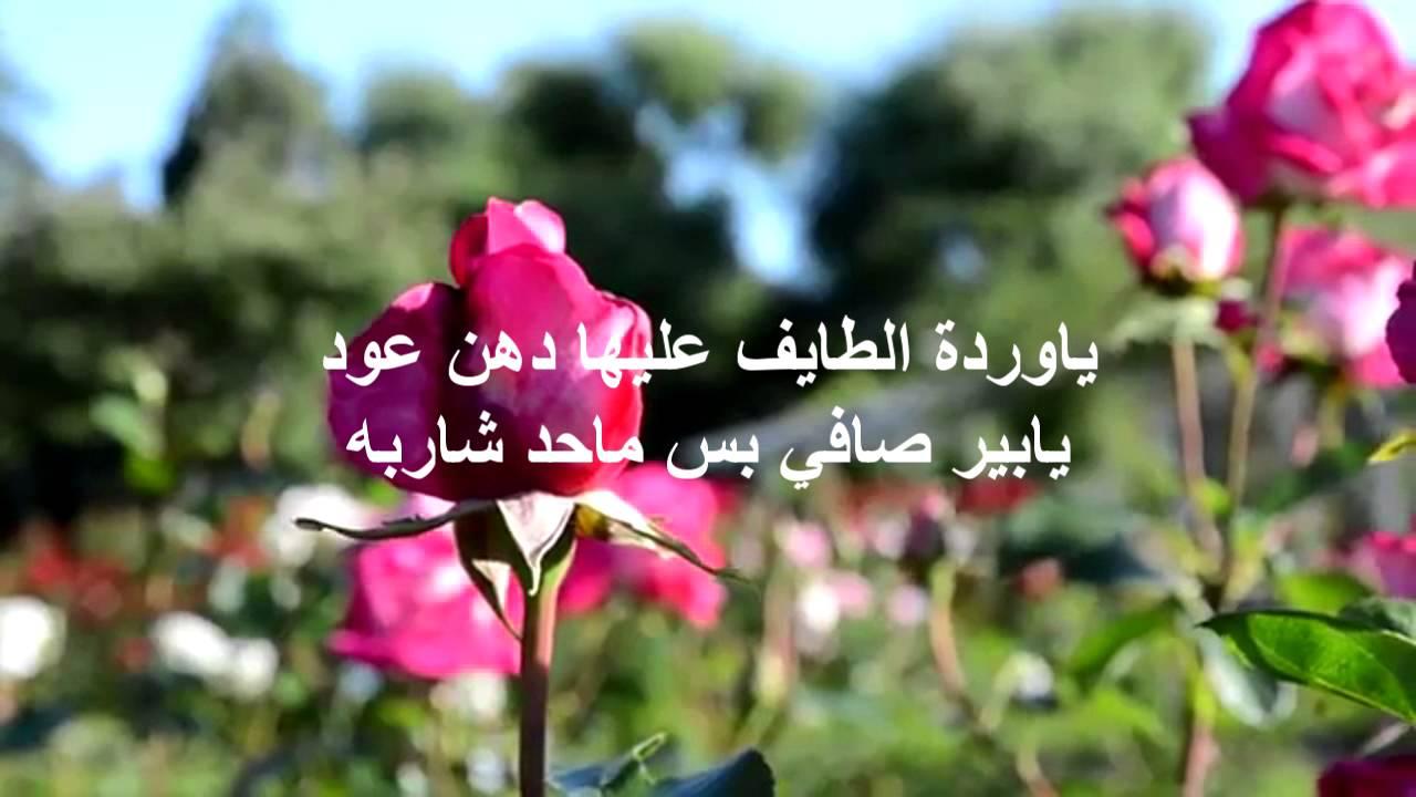 بالصور عبارات عن الورد , خواطر رقيقه فى حب الورد 713