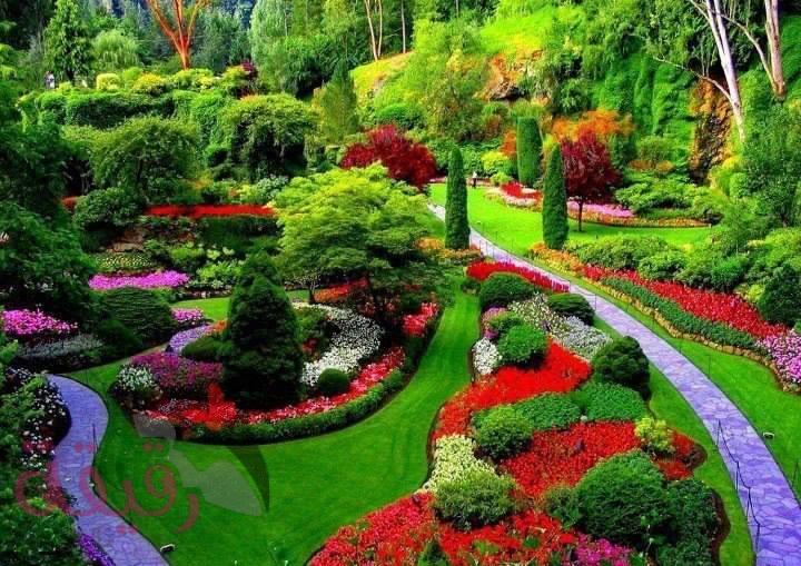 بالصور صور الطبيعة الجميلة , مناظر ساحرة رائعه فى الطبيعه 736 4