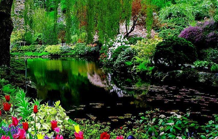 بالصور صور الطبيعة الجميلة , مناظر ساحرة رائعه فى الطبيعه 736 5