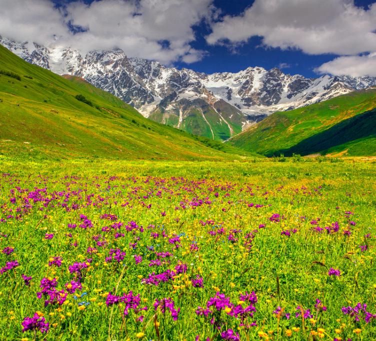 بالصور صور الطبيعة الجميلة , مناظر ساحرة رائعه فى الطبيعه 736 6