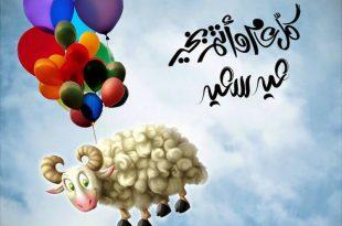 بالصور تهنئة عيد الاضحى , بطاقات تهنئه جميله للجميع فى عيد الاضحي 985 13 310x205
