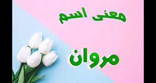 بالصور معنى اسم مروان , اسم مروان ومعناه فى اللغه العربية 1837 3 310x165