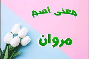 بالصور معنى اسم مروان , اسم مروان ومعناه فى اللغه العربية 1837 3 310x205