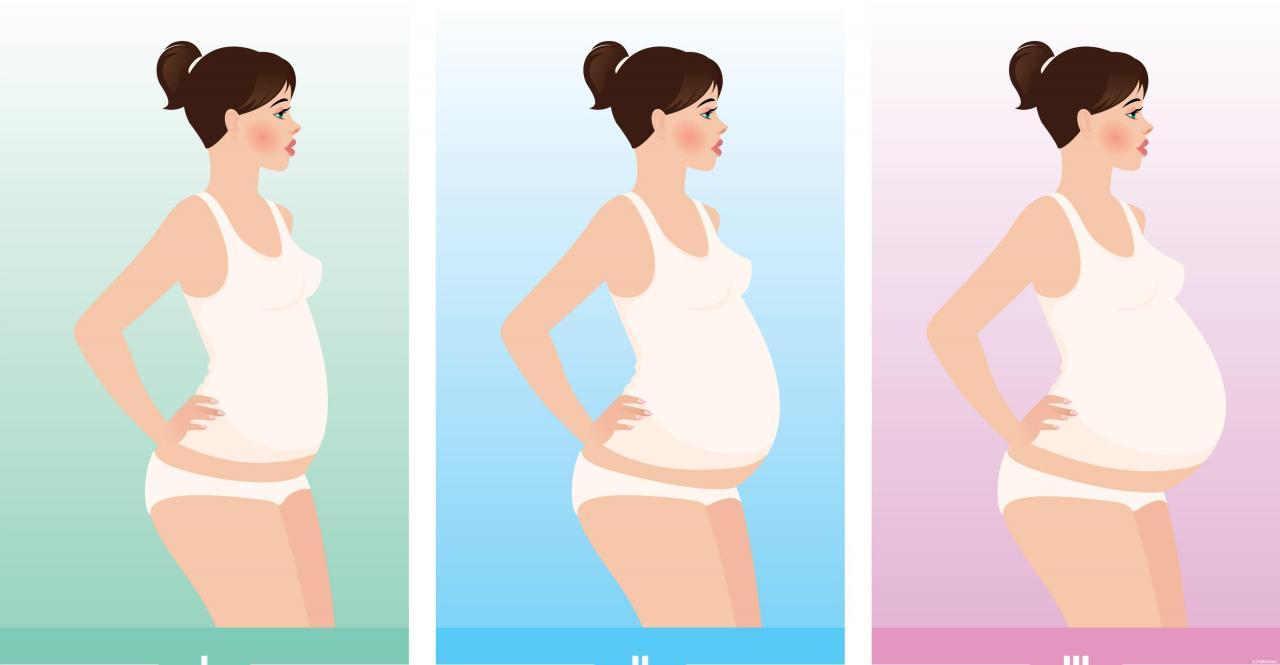 صورة متى يظهر بطن الحامل , في اي وقت يظهر الحمل