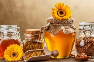 بالصور كيفية استخدام غذاء ملكات النحل , طريقة لعمل خلطات بعسل النحل 12563 1 310x205