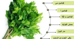 بالصور فوائد بذور البقدونس , طريقة استخدام البقدونس 12667 2 310x165