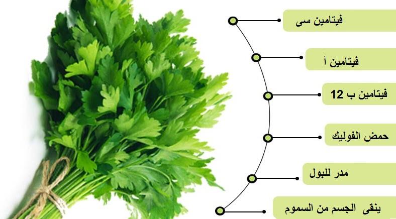 صورة فوائد بذور البقدونس , طريقة استخدام البقدونس