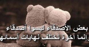 بالصور كلمات عن الاصدقاء , اجمل عبارات الصداقة 12704 10 310x165