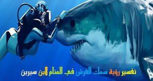بالصور سمك القرش في الحلم , دلالة رؤية سمك القرش 12709 2 310x165