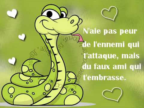 بالصور حكمة اليوم بالفرنسية , كلمات جميلة بالفرنسية 12718 3