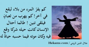 بالصور اقوال عن الدين , حكم عن الدين 12755 10 310x165