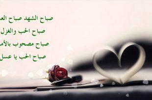 صورة عبارات عشق للحبيب , اجمل العبارات عن العشق