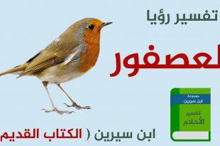 بالصور تفسير حلم العصافير , رؤية العصافير في المنام 12819 1 310x205