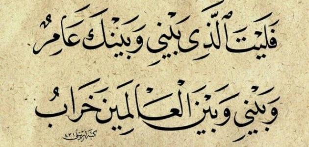 صورة اجمل ما قيل في اللغة العربية من شعر , اشعار مميزة في اللغة العربية 12930 4