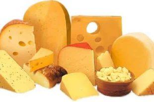 صور تفسير الاحلام الجبن , رؤية الجبن في الحلم