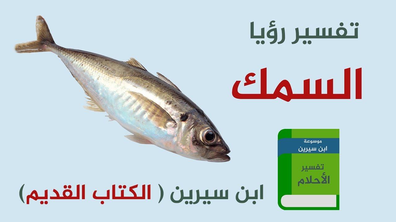 صورة ما تفسير السمك في المنام , رؤية السمك في الحلم