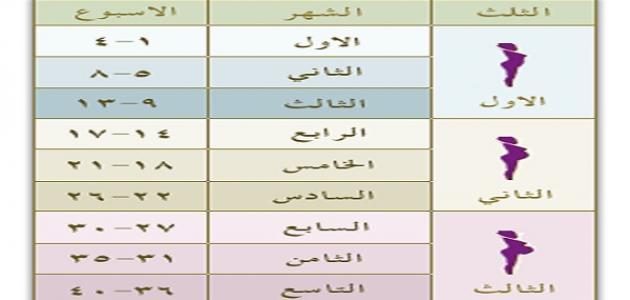 صورة حاسبة الحمل بالاشهر , لو عايزة تحسبي فترة الحمل ده جدول لحساب الحمل بالاسابيع والشهور