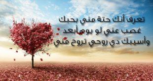 صور رسائل حب وغرام , الغرام والمحبه بالرسائل