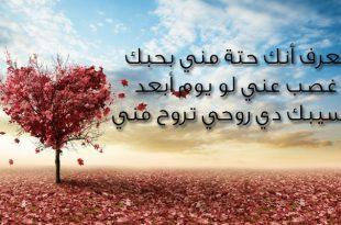 صورة رسائل حب وغرام , الغرام والمحبه بالرسائل