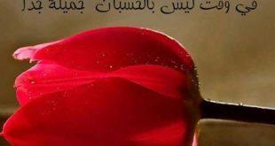 صور كلمات من ورود , الورود وصفاء النفس بكلماتها