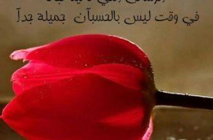 صورة كلمات من ورود , الورود وصفاء النفس بكلماتها