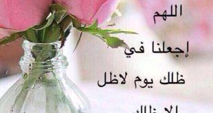 عن صباح الخير