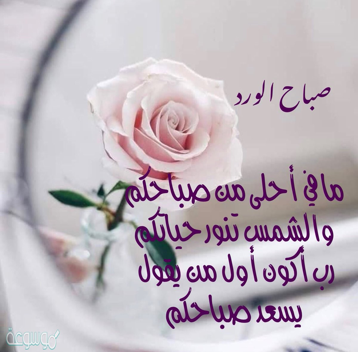 صورة احلى صباح, عباره مفيده للصباح 2160 5